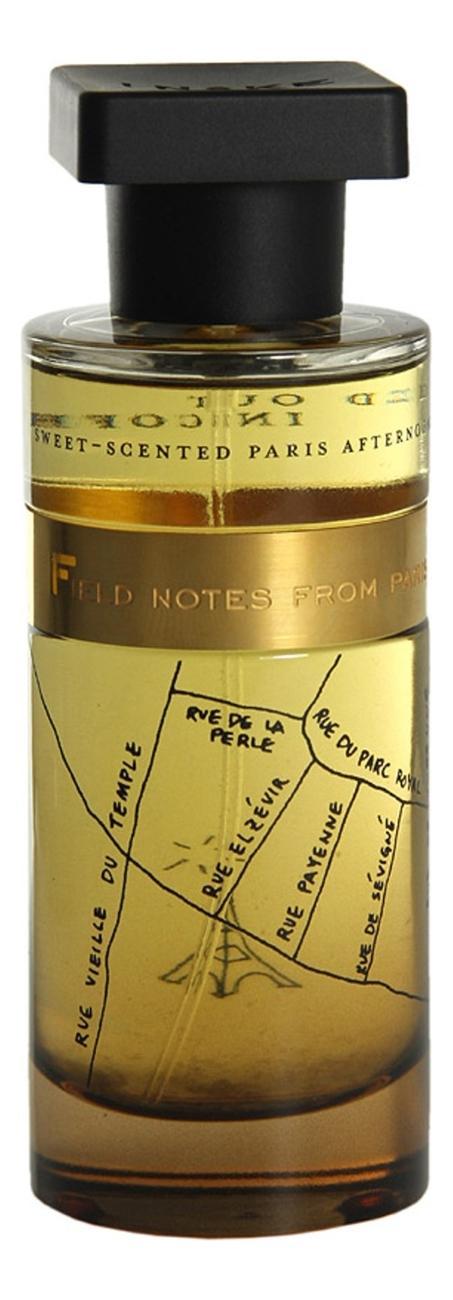 Ineke Field Notes From Paris