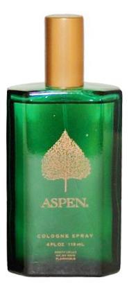 Coty Aspen For Men