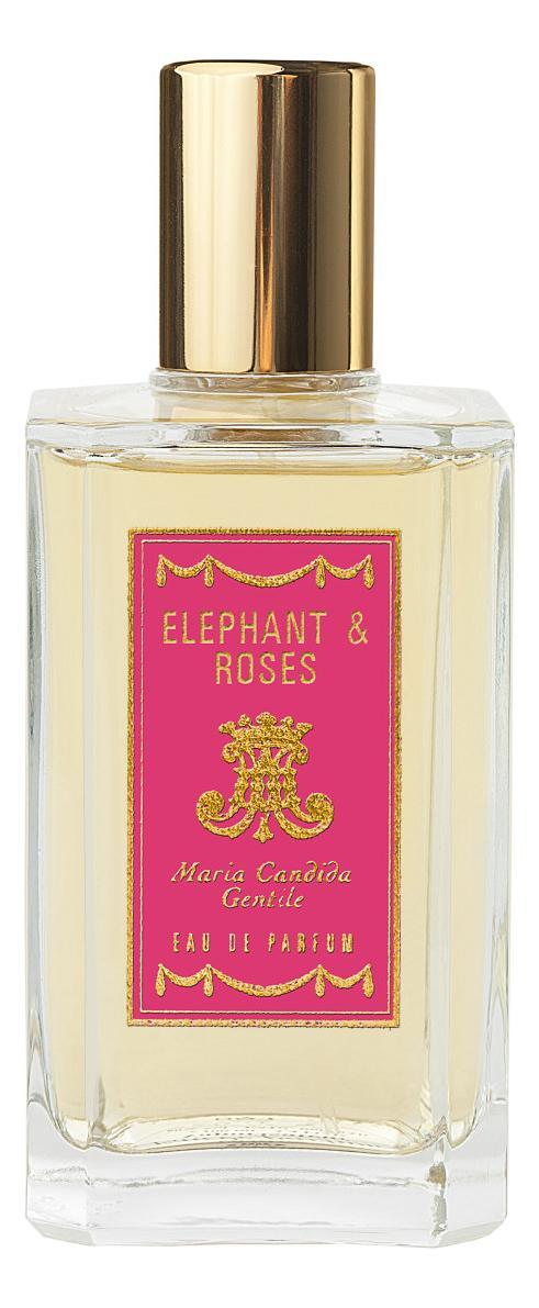 Maria Candida Gentile Elephant & Roses